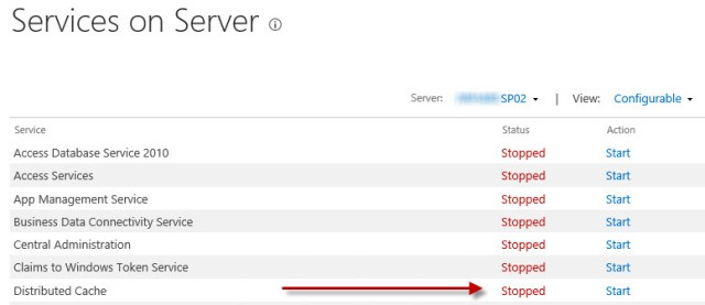 service on the server